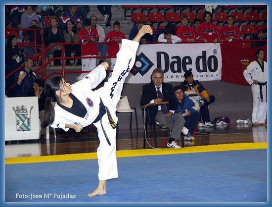 a history and philosophy of taekwon do The evolution of taekwondo from japanese karate by eric madis [1] taekwondo ( t'aegwondo , kicking and punching way/art) is a korean martial art and combative sport distinguished by kicks, hand strikes, and arm blocks.